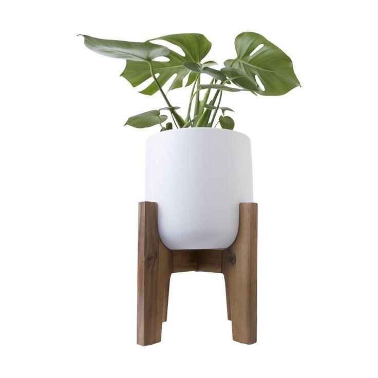 Pot with Acacia Stand | Kmart