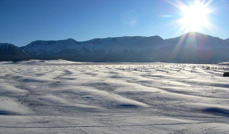 MONGOLIAN TOUR.Туры по Алтаю и Монголии.  Гигантская рябь течения в Курайской степи.  Гигантская рябь течения ( гигантские знаки ряби течения) - уникальная форма рельефа, макроаналог обычной песчаной ряби на дне водоема. Несколько тысяч лет назад у краёв ледников и ледниковых систем, а также в огромных межгорных котловинах возникали гигантские ледниково-подпрудные озера. Эти озёра систематически прорывали ледниковые плотины и вызывали супермощные паводки. В результате работы этих потоков…