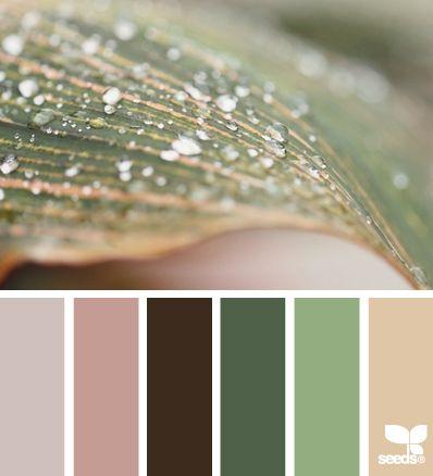 Design Seeds® Enclosed - j.mae.holliday@gmail.com - Gmail