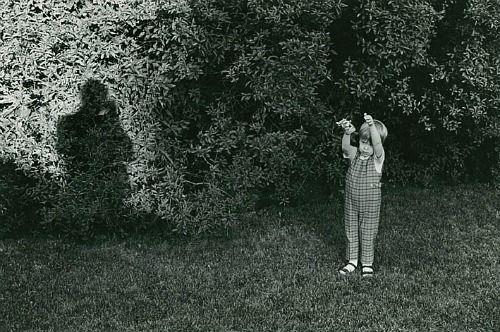 Ken Josephson, Bradley (1968)