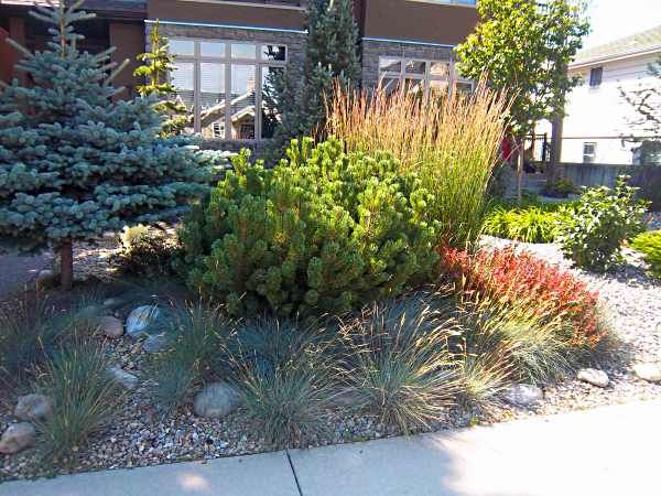25+ Gorgeous Landscaping Borders Ideas On Pinterest | Landscaping Edging,  Outdoor Garden Decor And Lawn And Garden
