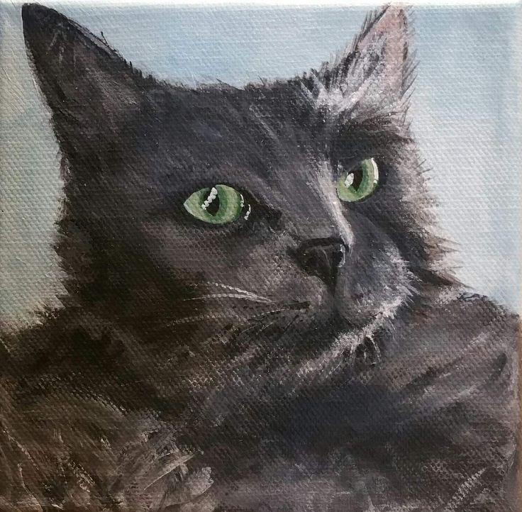 Cat  15x15cm acrylic on canvas