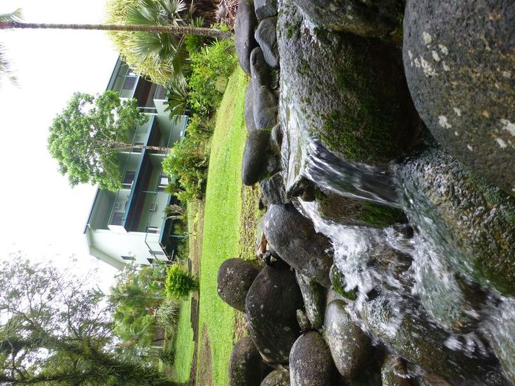 Tranquility on the Daintree, a Daintree Lodge | Stayz