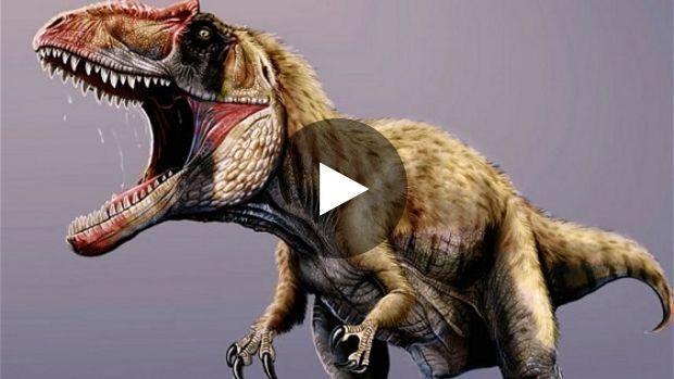 Des paléontologues ont révélé avoir identifié une nouvelle espèce de dinosaures carnivores