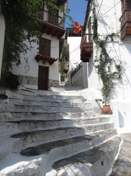 Lovely steps of Glossa