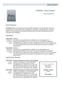 Plantilla Currículum Vitae - Modelo Combinado 1