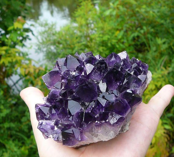 This is a beautiful amethyst cluster from Uruguay. This specimen consists of numerous medium/large crystals that shine a vibrant dark purple color! It has a lovely shape, and can be admired from many angles. Most of the crystals are intact, but there are a couple clearer spots around the edges, where some of the crystals have fractured. This piece has a rock base (the natural brown colored, outside of the geode), which is not completely flat, but it still sits easily for display. You wil...