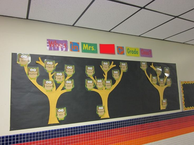 back to school bulletin boards | Owl Themed Back To School Bulletin Board - MyClassroomIdeas.com