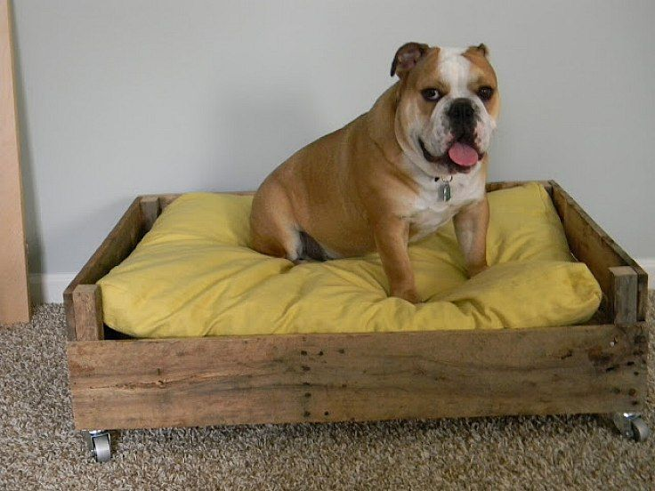 Wood pallets garden the beautiful recycles comfort place for Wood pallet dog bed