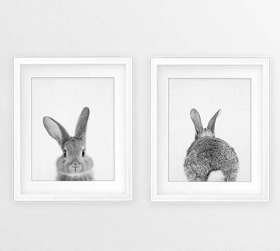 Bunny Print Set Woodland Animal Wall Art Nursery Black And Etsy Animal Wall Art Nursery Baby Animal Prints Nursery Animal Prints