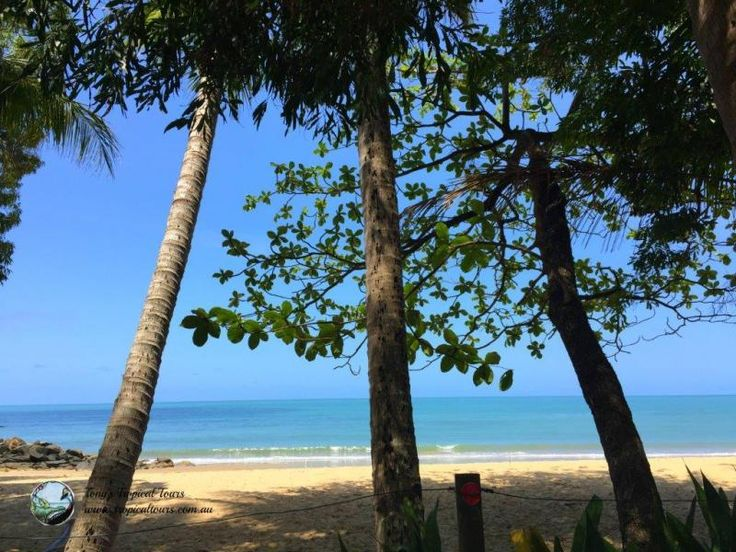 Daintree Beaches...need some inspiration to travel to the Tropics in February?  here it is visit us at www.tropicaltours.com.au #daintreebeaches #tropicalparadise #portdouglasdaintree