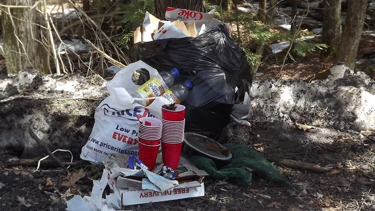 April-12-2015 Goshen CT 14 #DietCoke cases, 12 #Snapple bottles, 2 pizza boxes, 27 Red #SoloCup and other assorted litter. #LitterChallenge