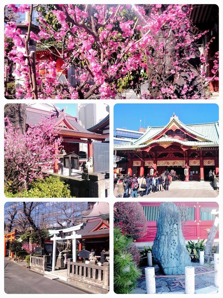 ☆共和AMEL梅情報☆  東京、神田明神(神田神社)の早咲き梅を求めて…  立派な御神殿では毎日多くの人々が参拝しています。 本殿の右側に回ると架空の人物ですが、銭形平次の碑があります。 もっと奥へ回り込んで行ったら、「あら、綺麗!!」 ひっそりと1本の梅が咲いていました。 今年は大雪や寒さで出足が遅いのかも?  #共和AMEL #梅 #共和AMEL梅情報  [共和薬品工業URL] http://www.kyowayakuhin.co.jp/
