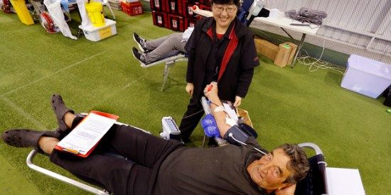 Campaign draws out more blood donors – National – NZ Herald News #donating #blood #australia http://donate.remmont.com/campaign-draws-out-more-blood-donors-national-nz-herald-news-donating-blood-australia/  #blood donation nz # Campaign draws out more blood donors Winnie Wang watches as Charles Frische donates blood for the 58th time in Whangarei in June. The Blood Service wants more Northlanders to donate and will be in the region over the next two months collecting blood. Photo / John…
