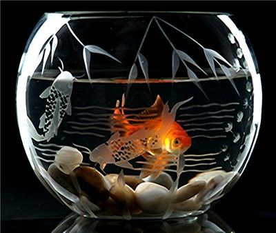 decorative etched glass fish bowl
