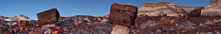 Jasper Forest is magical in twilight, particularly the logs on stone pedestals; A natural work of art. Petrified Forest National Park, AZ