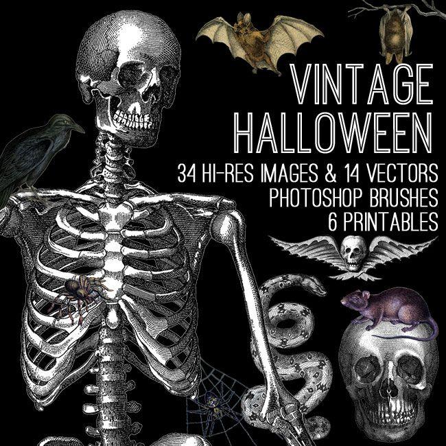 263 best Halloween images on Pinterest Halloween prop, Halloween - halloween decoration printouts