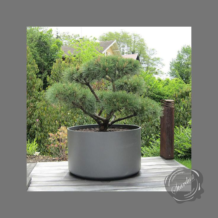 Extra Large Round Outdoor Planter P*T Xl5 Jpg Outdoor 400 x 300