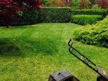 Giardiniere economico