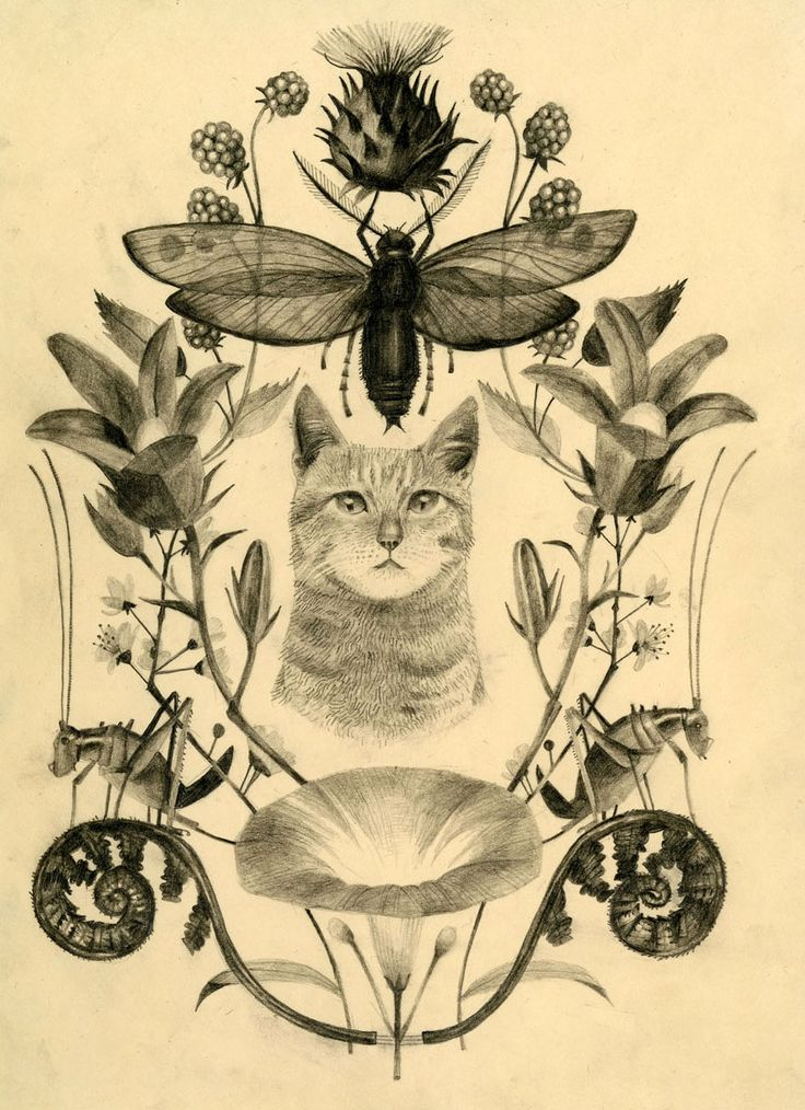 this would be a cool tattoo though would not have cat in the middle but maybe a deer...(flowerbar: Carson Ellis)