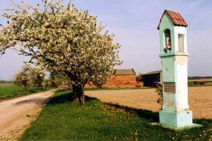 Przydrożna kapliczka w Ignacewie.