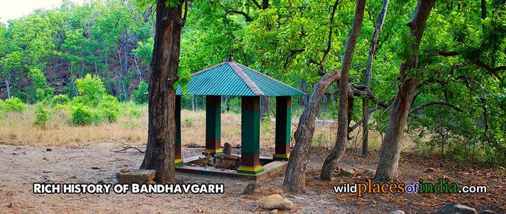 Visit and be enchanted by the rich history of Bandhavgarh. http://wildplacesofindia.com/bandhavgarh-national-park.html