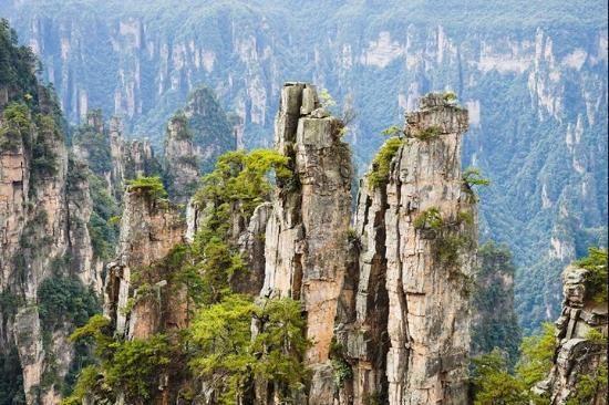 密林に深く覆われた熱帯雨林