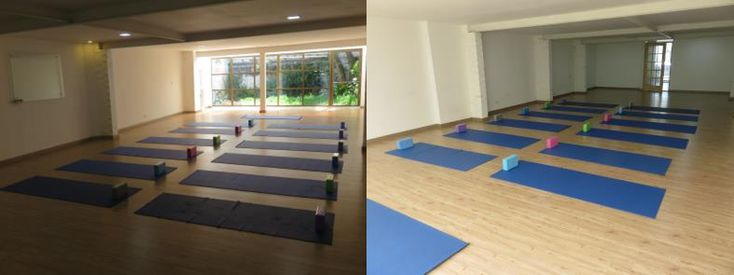 Clases de Yoga en Bogotá - BIONOVA