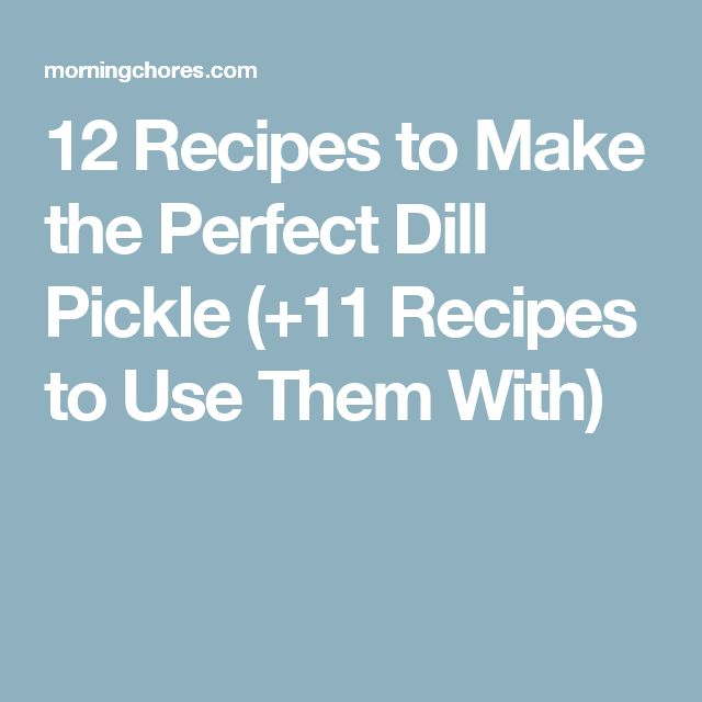 12 Recipes to Make the Perfect Dill Pickle (+11 Recipes to Use Them With)