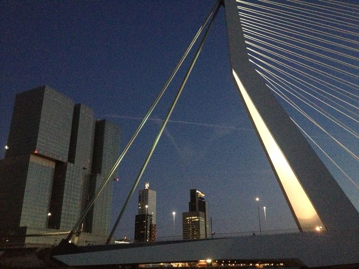 The Rotterdam building and Erasmus bridge