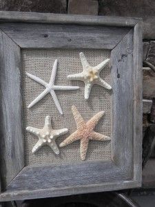 Starfish decor for bathroom - cute way to display memories from a trip to the beach.