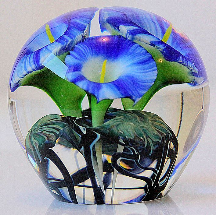 Here is a fantastic work by Jeremiah Lotton. This large paperweight depicts a series of beautiful blue morning glories on a lush green leafy base.