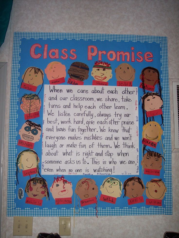 I would like to have the students help create our own class promise.  A neat idea that visually reminds tham and holds them accountable for their actions towards others.