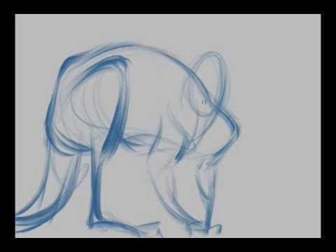▶ Michael Mattesi- Red Kangaroo - YouTube