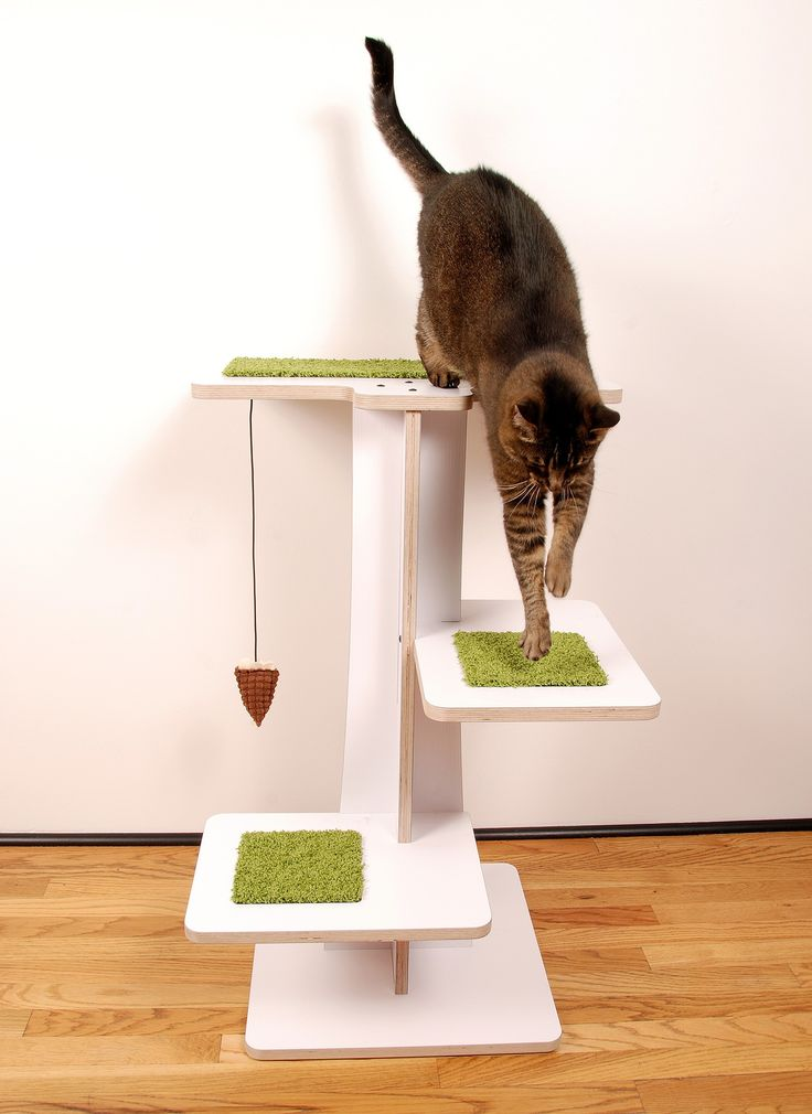 Modern White Cat Tree with Plush Lime Carpet and Brown Toy