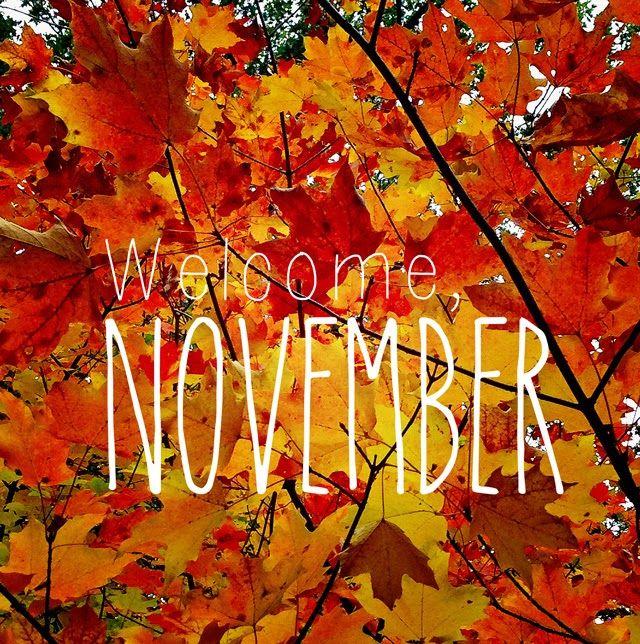 Welcome, November