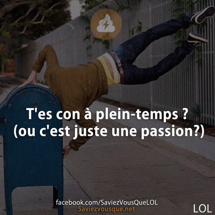 T'es con à plein-temps ? (ou c'est juste une passion?) | Saviez Vous Que?