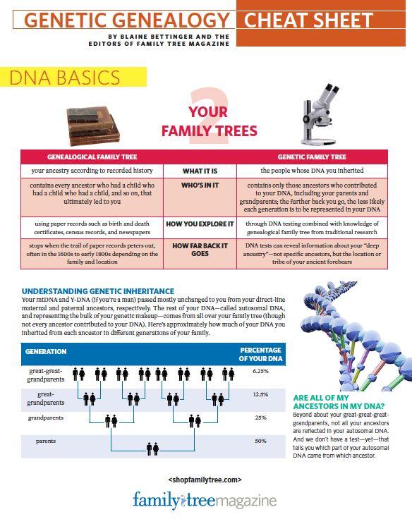 Genetic Genealogy Cheat Sheet | ShopFamilyTree
