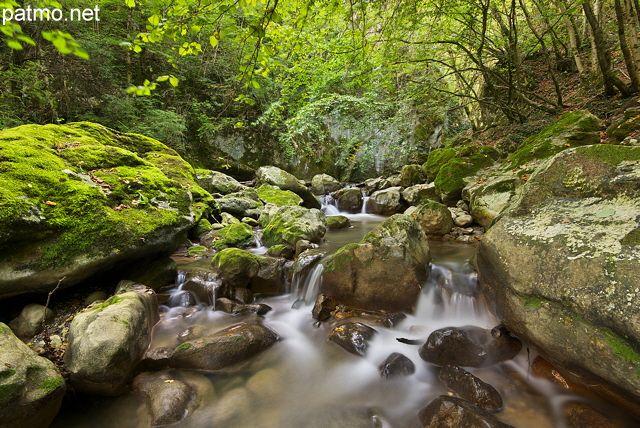Image de petites cascades en sous bois le long du torrent du Fornant