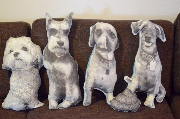 How to Make a Pillow that Looks Like Your Dog   The BarkPost. Naturally, I will be following these instructions to make pillows of my cats.