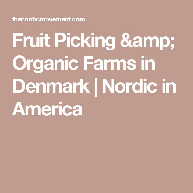 Fruit Picking & Organic Farms in Denmark | Nordic in America
