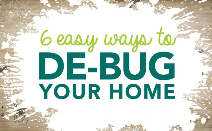 Check out our video to learn 6 Easy Ways to Get Rid of Common Household Bugs!