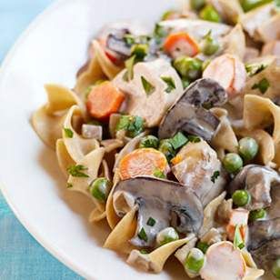 Slow-Cooker Turkey Stroganoff Recipe -- I tried this tonight, and though the sauce didn't thicken up like I would have liked, it was delicious and the whole family ate it up. Makes enough for 2 meals. -HLD