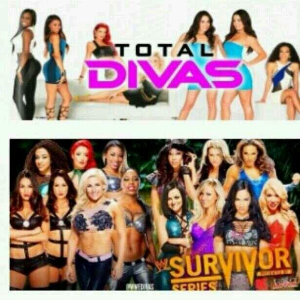 Total Divas vs True Divas | WWE Divas | Pinterest | Divas and Total divas