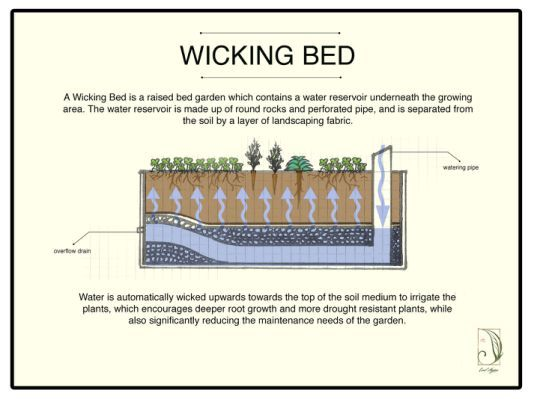Wicking Bed Technology Wicking