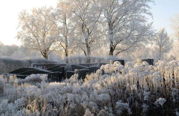 Hummelo in winter - Piet Oudolf