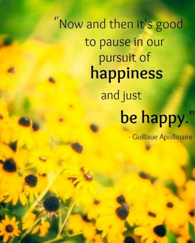 """Now and then it's good to pause in our pursuit of happiness and just be happy.""  - Guillaume Apollinaire"