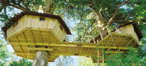 we bouwen een boomhut!!!! een kraaien nest, zoiets als dit, maar dan zonder dak..