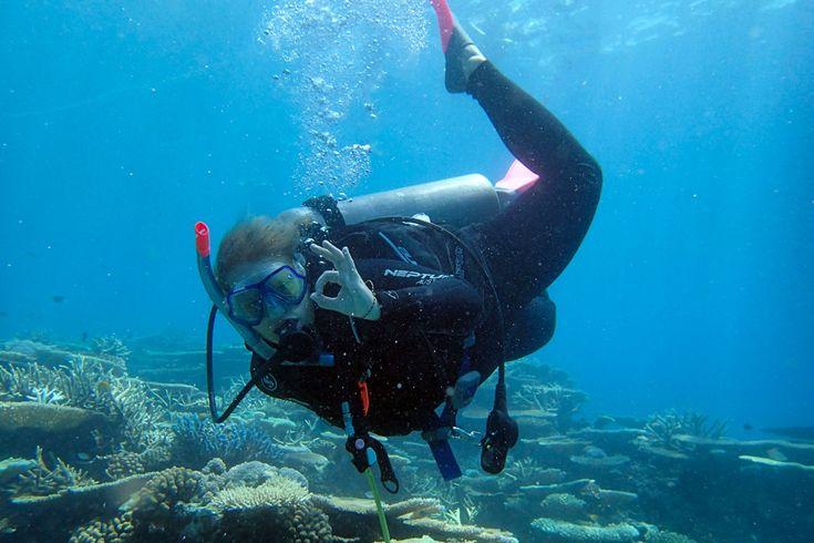 Dykning og snorkeling på Great Barrier Reef. Få inspiration og tips her