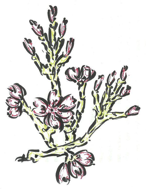 Cherry Blossoms 1 by ~nano9999 on deviantART